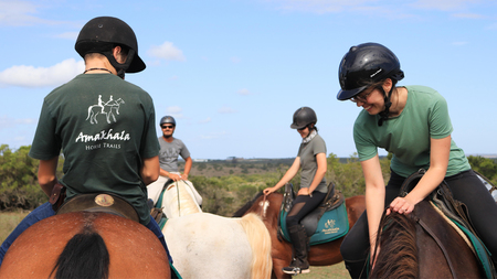 Amakhala Game Reserve Horse Trails In Action