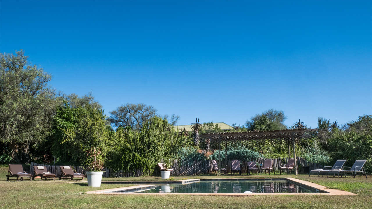 Amakhala Game Reserve Leeuwenbosch Country House Pool View