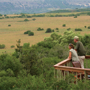 Amakhala Game Reserve Visit Our Lodges