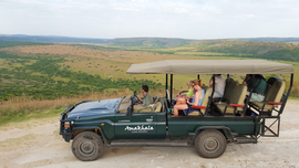 Amakhala Game Reserve Game Game Viewing