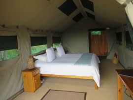 Woodbury Tented Camp Amakhala Game Reserve Room