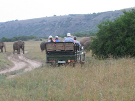 Amakhala Game Reserve Guests On Safari Elephants