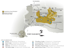 Amakhala Game Reserve Map Eastern Cape South Africa