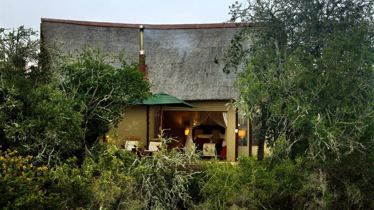 Bush Lodge Amakhala Game Reserve Suite Exterior View