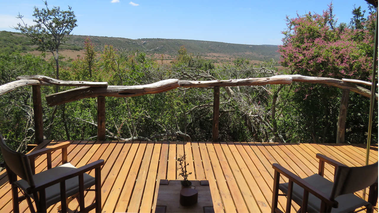 Amakhala Game Reserve Woodbury Tented Camp Tents View