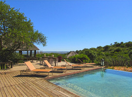 Safari365 Visits Amakhala Game Reserve And Bukela Game Lodge