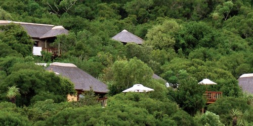 Eastern Cape Safari Accommodation Amakhala Game Reserve Woodbury Lodge
