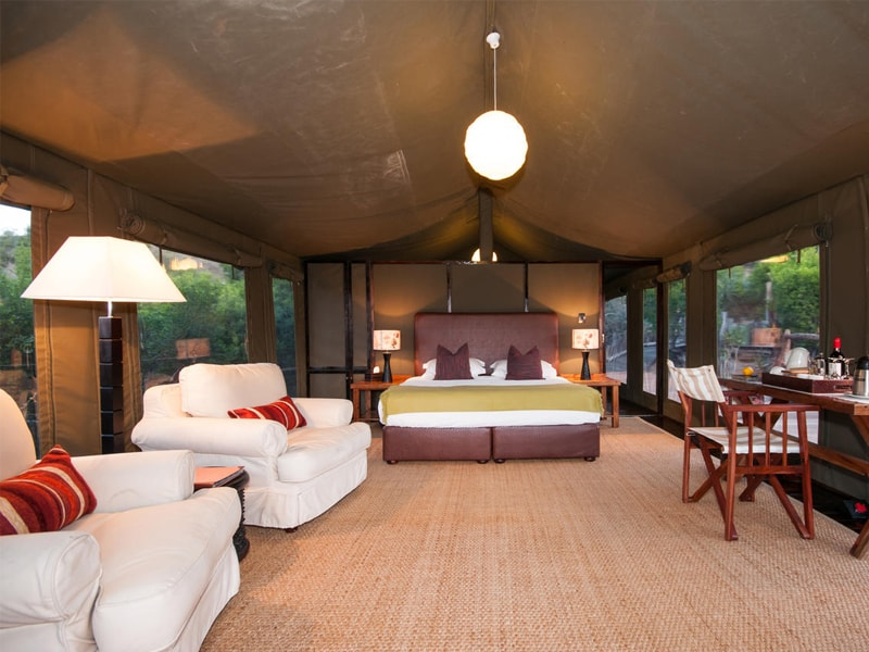 Eastern Cape Safari Greater Addo Accommodation Amakhala Game Reserve Hills Nek Safari Camp Room Viewl Min