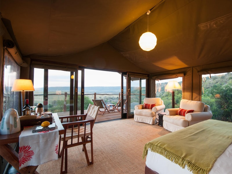 Eastern Cape Safari Greater Addo Accommodation Amakhala Game Reserve Hills Nek Safari Camp Interior Room Min