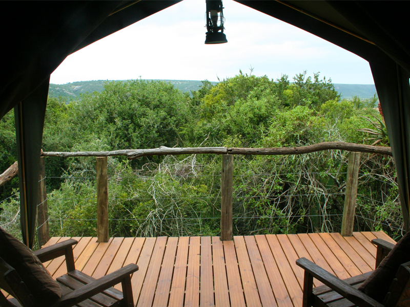 Woodbury Tented Camp Family Tent View