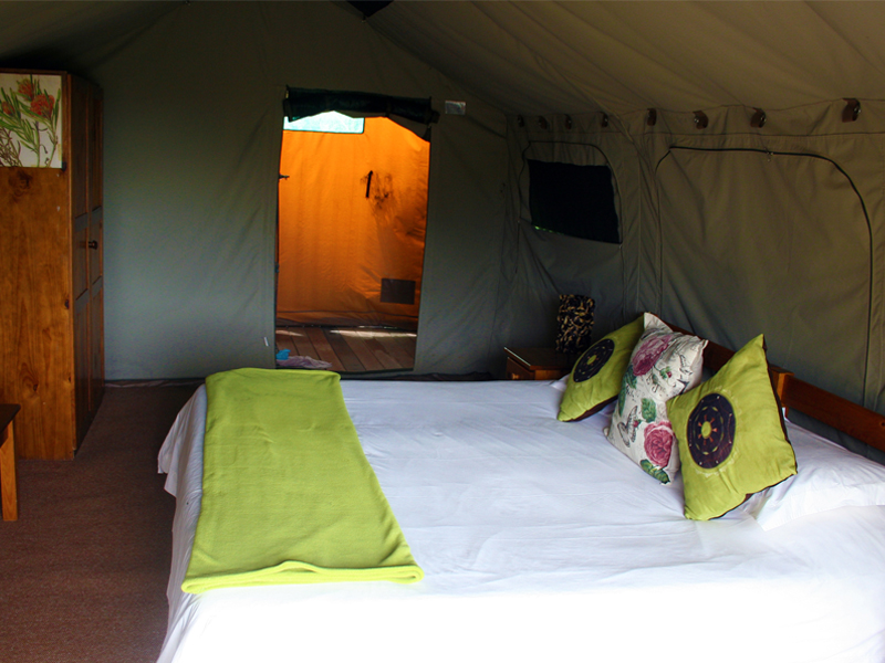 Woodbury Tented Camp King Room Bedroom
