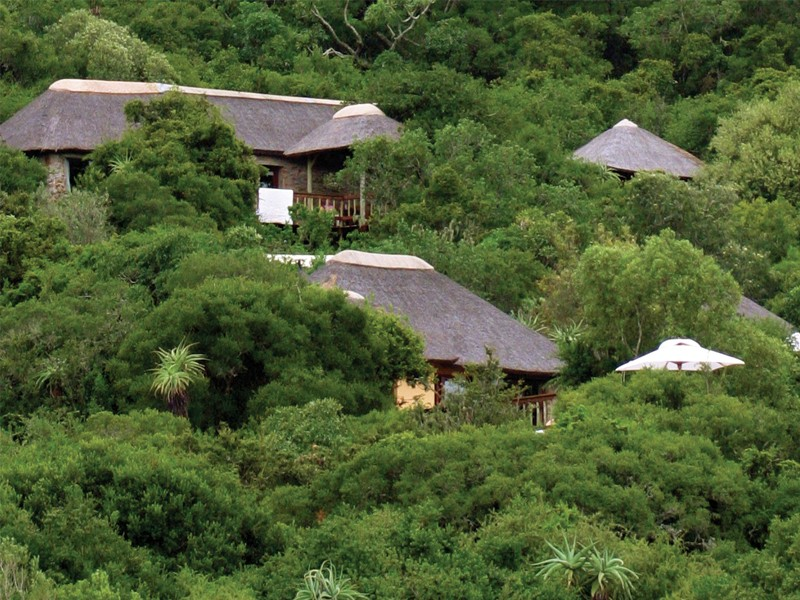 Amakhala Game Reserve Holiday Woodbury Lodge