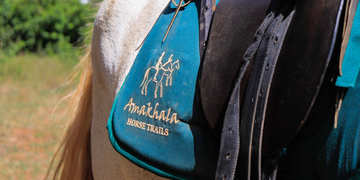 Amakhala Game Reserve Horse Trails