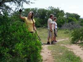 Amakhala Game Reserve Conservation Safari 1