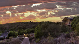 Amakhala Game Reserve Hills Nek Safari Camp Sunrise