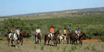 Amakhala Game Reserve Horse Trails Guests In Action